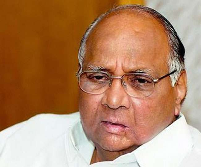 'Targeted by vindictive government': Congress, Shiv Sena back Sharad Pawar in money-laundering case