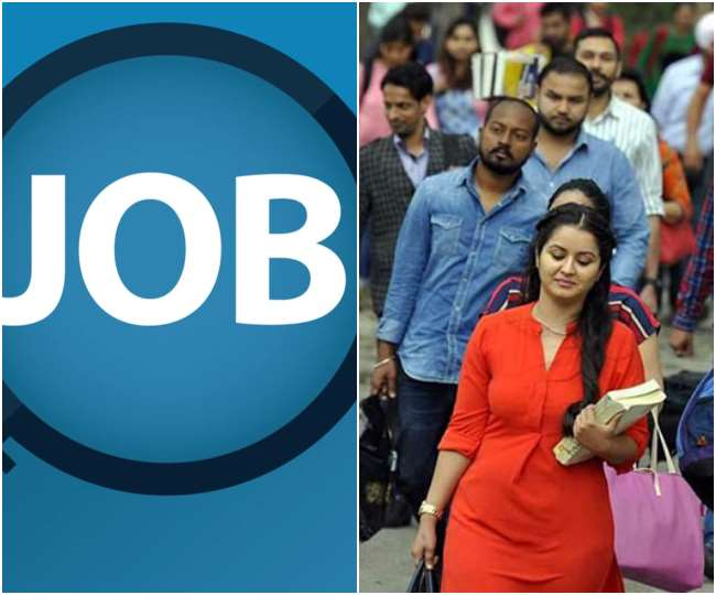 Google launches 'Kormo Jobs' Android app in India to help job seekers find best opportunities; check details here