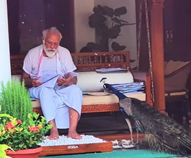 PM Narendra Modi bonds with peacocks in an adorable video   Watch