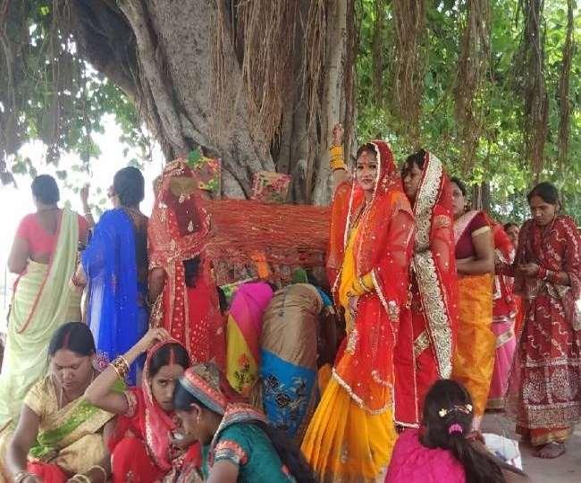 Vat Purnima Vrat 2020: Date, Puja Vidhi, Shubh Muhurat and Importance of  Vat Savitri Vrat