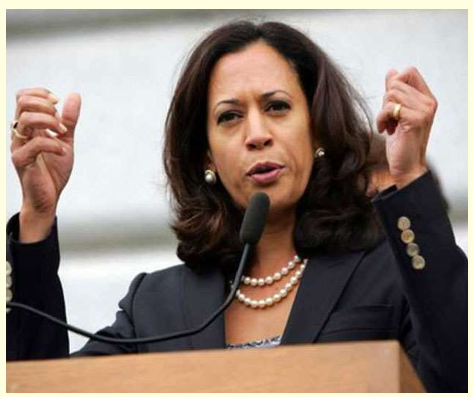 Kamala Devi Harris: Interesting facts to know about USA's first ever Indian-origin Vice President-elect