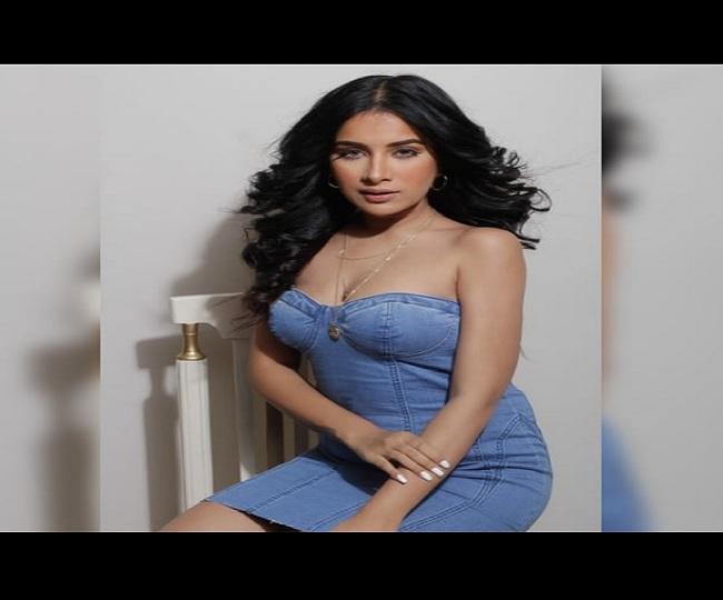 Bigg Boss Season 14 Contestant Sara Gurpal: All you need to know about the Punjabi actress-singer