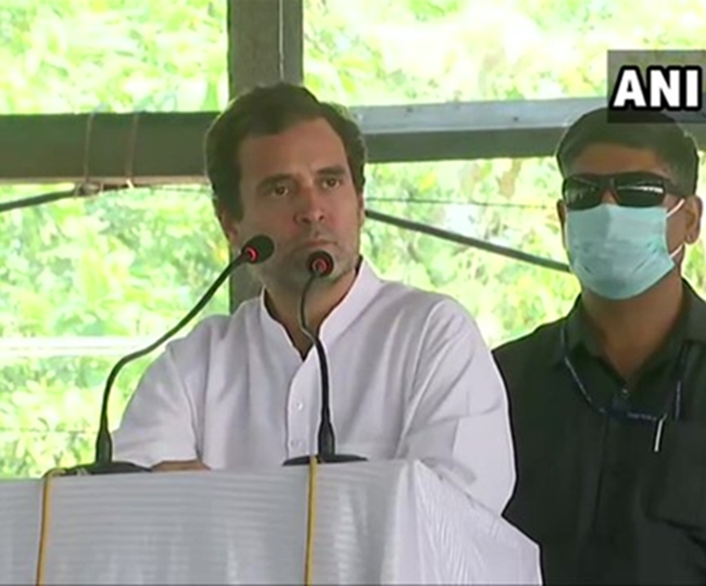 Will remove these black laws if voted to power: Rahul Gandhi at protest march against newly-enacted farm laws