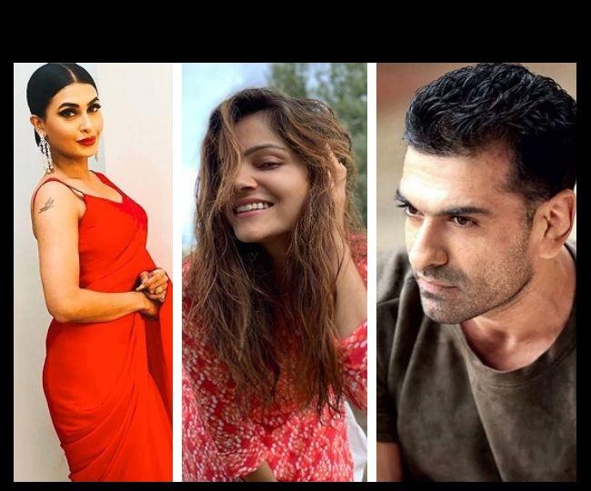 Bigg Boss 14, Episode 12 Highlights: Rubina Dilaik and Pavitra Punia lock horns for luxury budget task; Eijaz Khan makes a shocking revelation