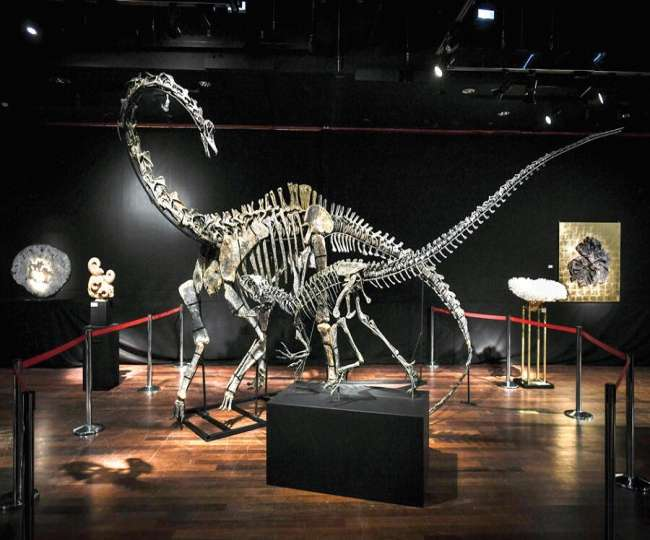 Scelidosaurus: First complete dinosaur skeleton gets reconstructed 162 years after discovery