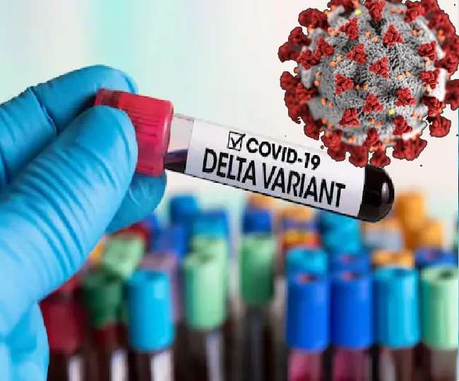 Delta variant of COVID-19 found in 135 countries, global cases could exceed 20 cr by next week: WHO