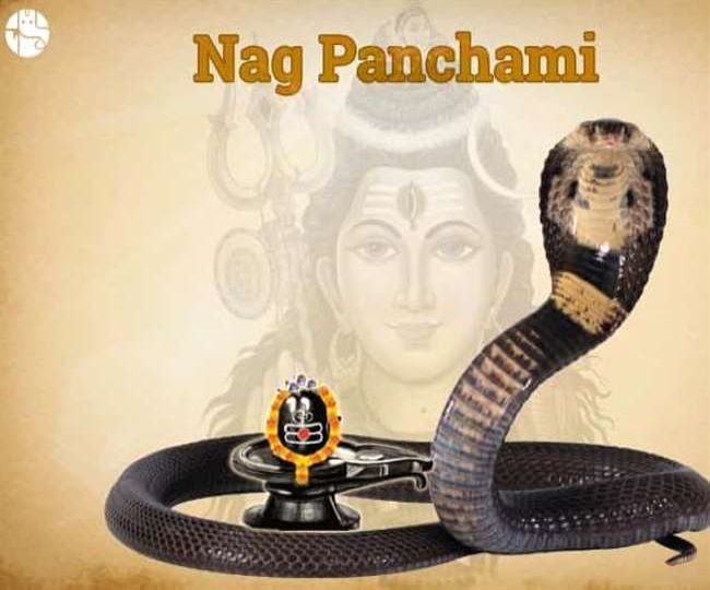 Nag Panchami 2021: Check out shubh muhurat, significance, puja vidhi, mantra and more about this festival