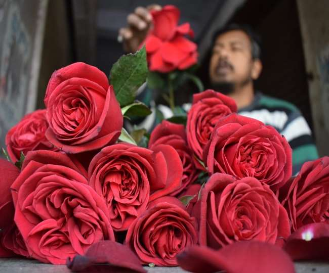 Happy Rose Day 2021: These 5 innovative gift ideas will help you express your love for your partner in a better way