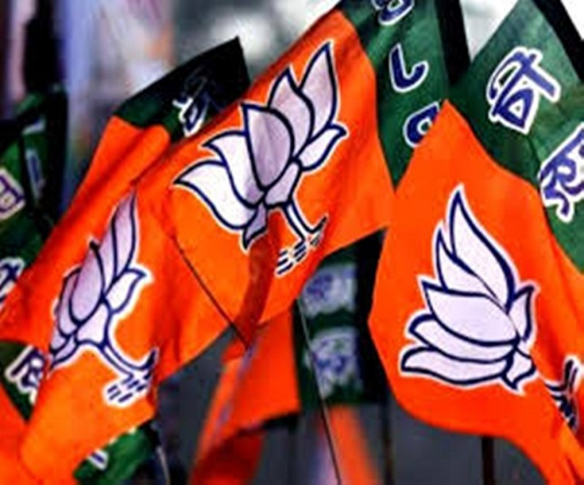 Gujarat Local Body Polls: BJP sweeps all 6 Municipal Corporations; AAP stuns in Surat, Congress continues dismal show