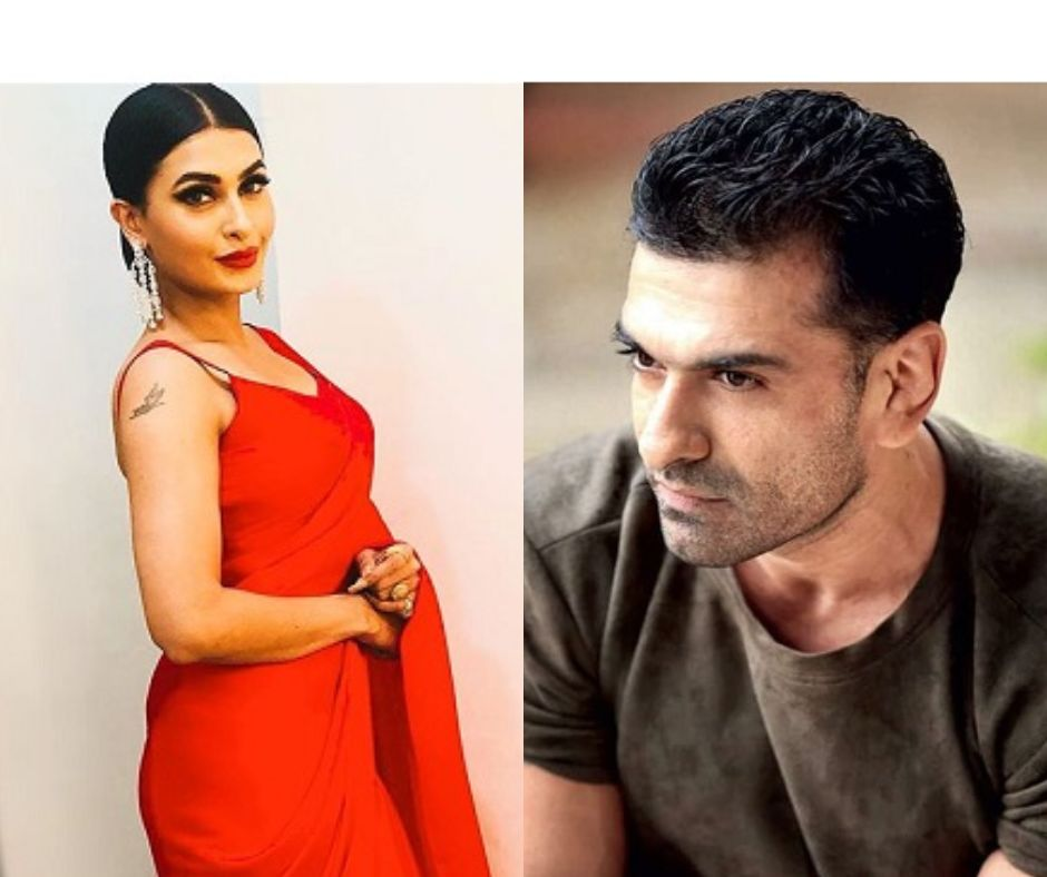 Bigg Boss 14: Love is in the air! Eijaz Khan confesses feelings for Pavitra Punia; here's what latter has to say