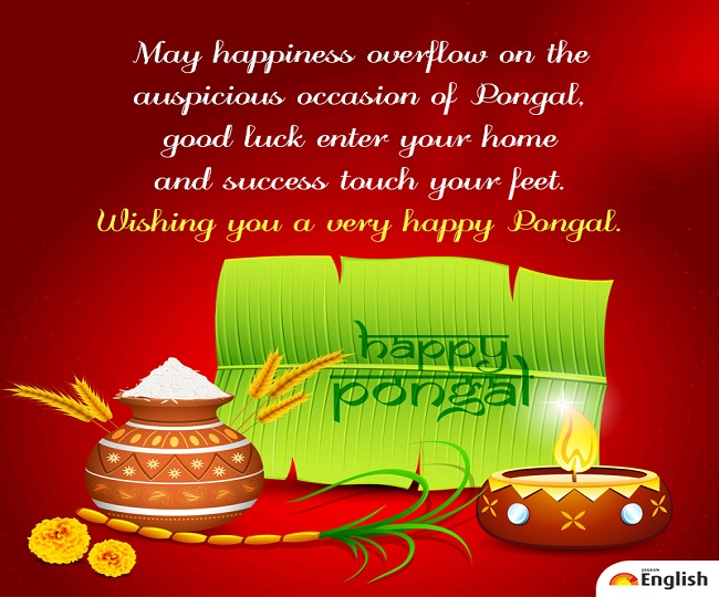 Happy Pongal 2021: Wishes, quotes, greetings, images, wallpapers, WhatsApp and Facebook status to share on this day