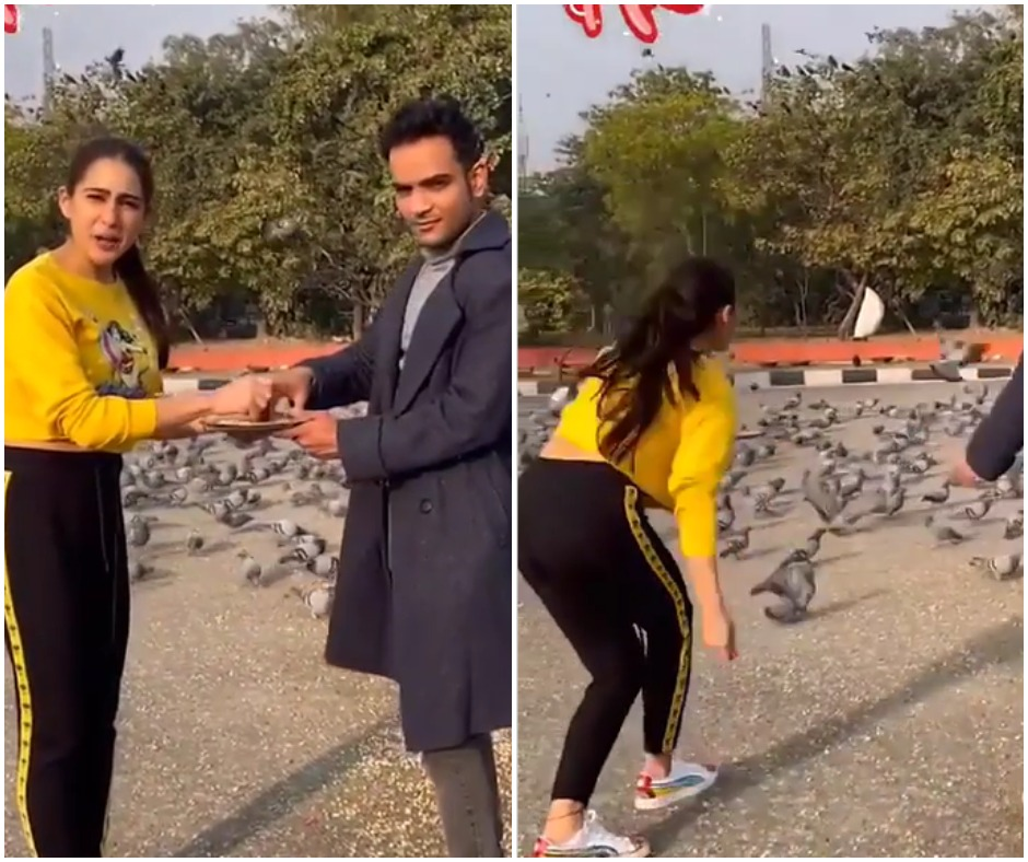 Inspired by Shah Rukh Khan, Sara Ali Khan feeds pigeons in DDLJ style but there is a catch | WATCH