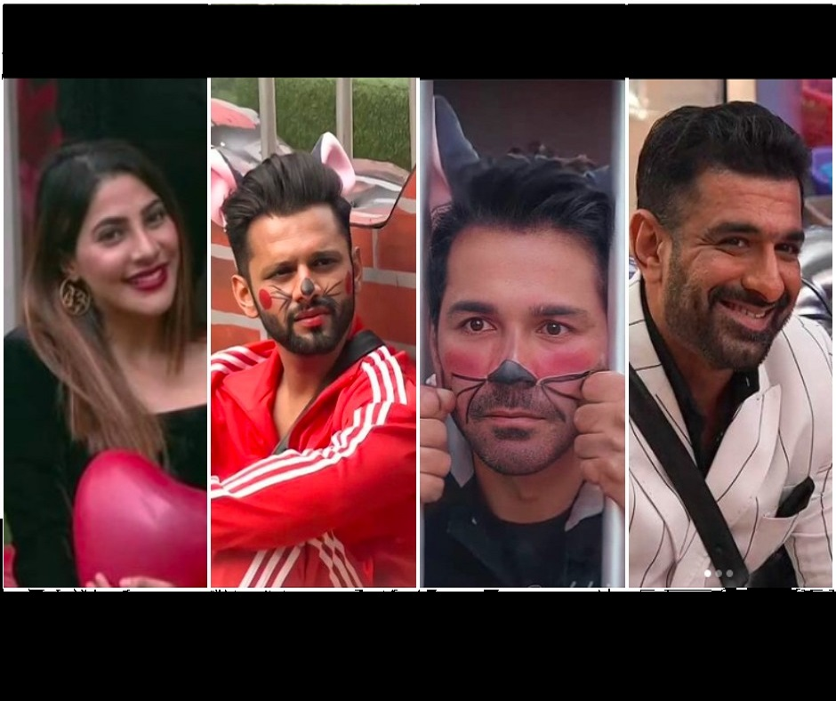 Bigg Boss 14: Rahul Vaidya, Abhinav Shukla, Eijaz Khan and Nikki Tamboli, who will become the captain of BB House?