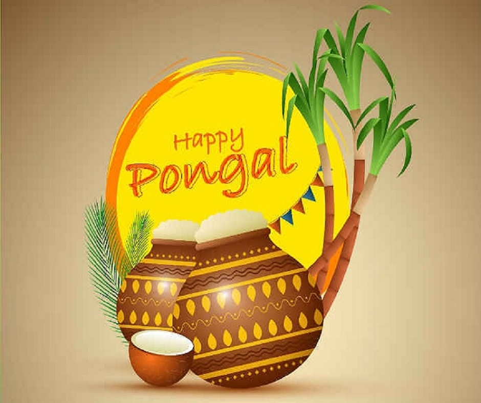 Pongal 2021 Date and Time: Know days, dates and timings for harvest festival of Tamil Nadu