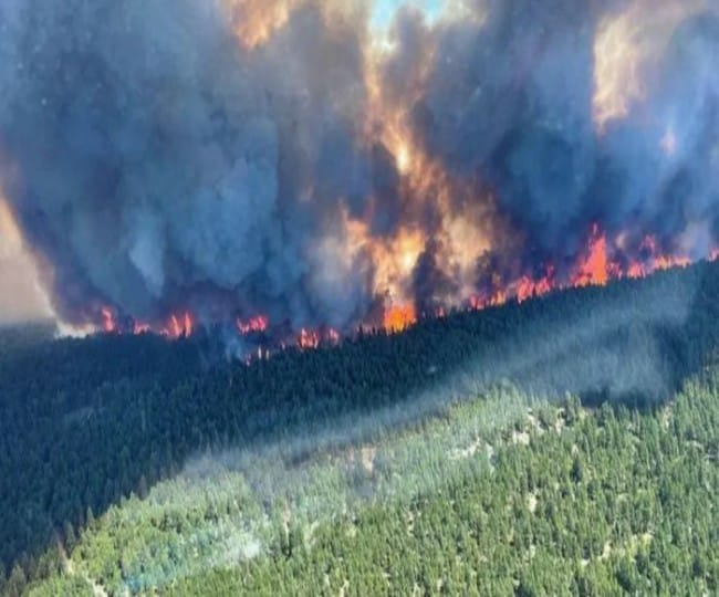 Explained: How the extreme heat wave killed over 300 in Canada as wildfires rage on