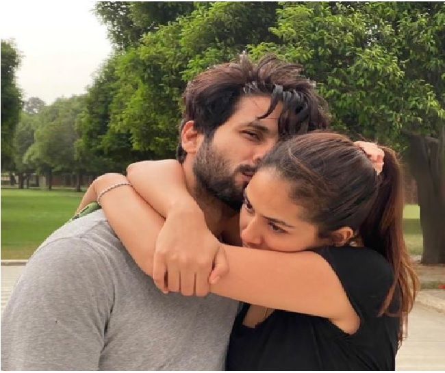 'More than words suffice': Mira Rajput's adorable wish for Shahid Kapoor on 6th wedding anniversary