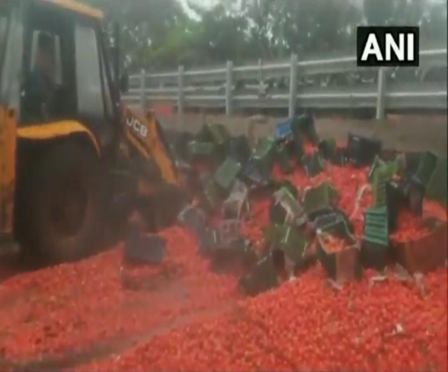 Mumbai highway turns red after truck carrying 20 tonnes of tomatoes overturns due to heavy rain | Watch Video