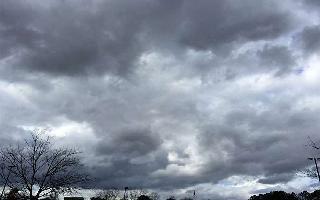 Monsoon Updates: Heavy rains predicted in UP, Haryana, Punjab in next 2..
