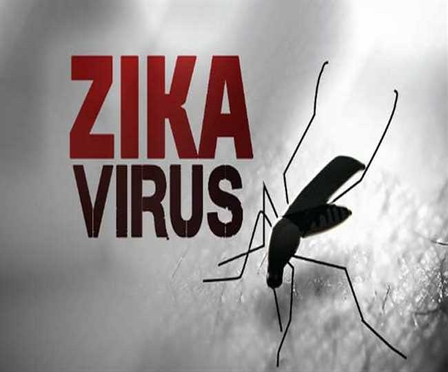 Zika Virus cases found in Kerala amid COVID-19 worries; check symptoms, prevention and treatment here