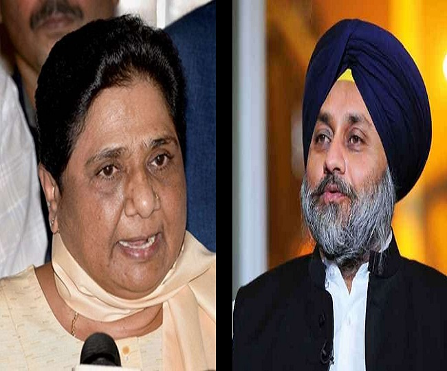 Mayawati's BSP to forge alliance with Akali Dal for Punjab Assembly Election 2022: Reports
