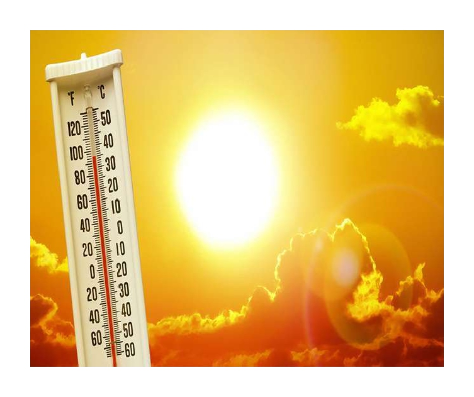 Over 200 people die as Canada records all-time high temperature of 49.5 degrees Celsius; red alert issued