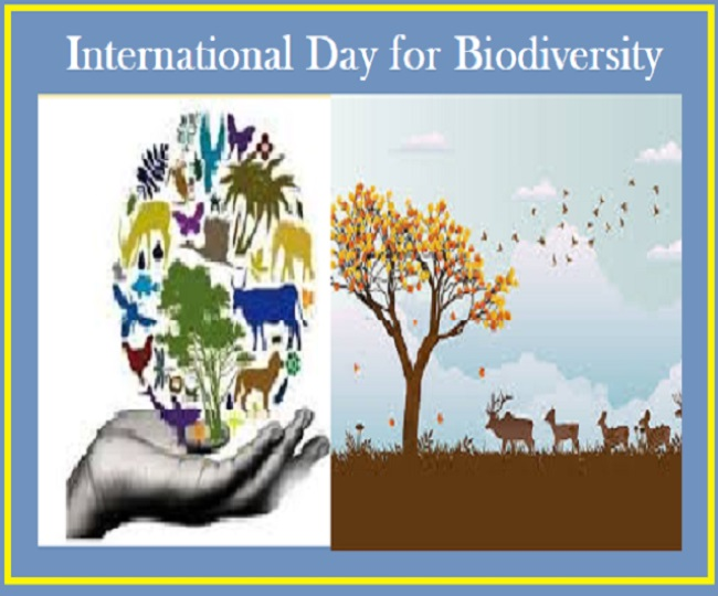 International Day for Biological Diversity 2021: Wishes, greetings, quotes, messages, WhatsApp and Facebook statuses to share on this day