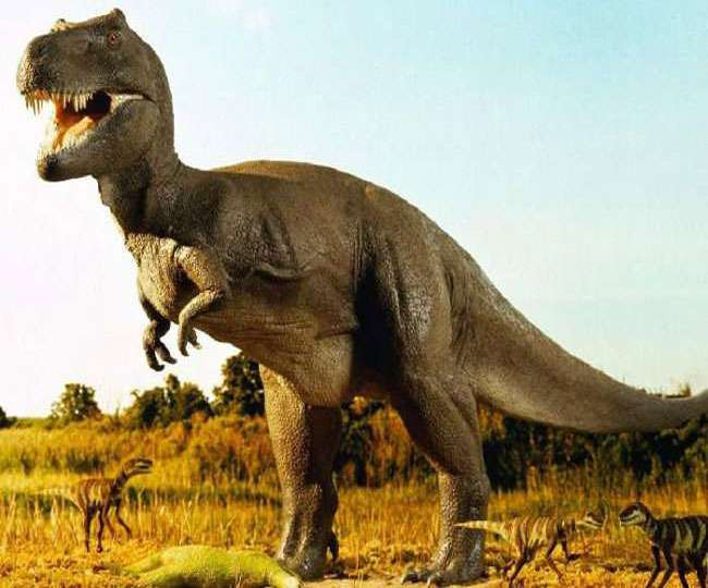 New species of dinosaur, which used to roam on Earth 70 million years ago, discovered in Brazil