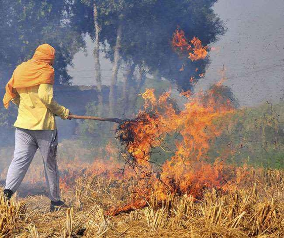Jagran Explainer: How Centre plans to combat stubble burning by using biomass pellets in coal-fired plants