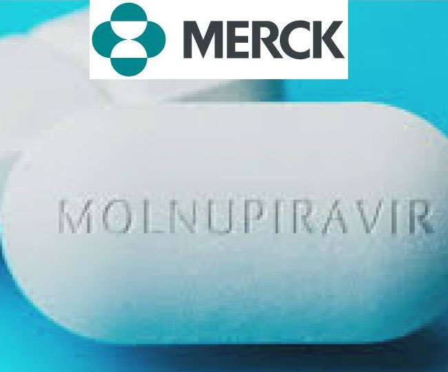 COVID-19 Treatment | Merck's oral pill can half hospitalisation, death risk in COVID patients: Study