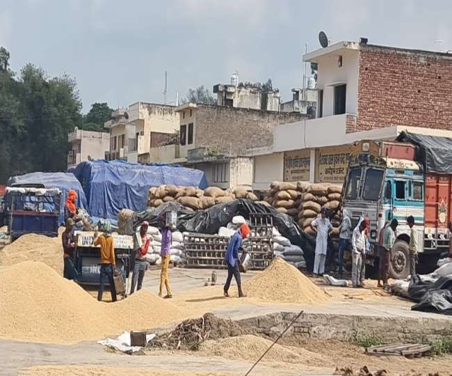 Paddy procurement in Punjab, Haryana to start from October 3, says govt; farmers call off protest