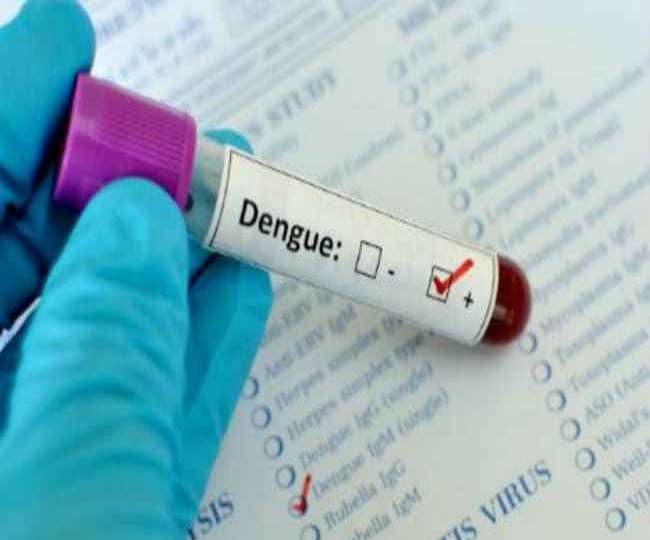 Dozens dead, many infected as Dengue fever rages in India amid COVID scare; UP, MP worst-hit | Check state-wise status here