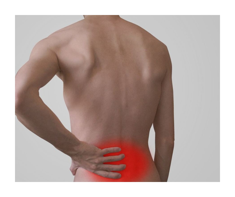 World Physical Therapy Day 2021: 5 easy tips to deal with back pain in your daily life