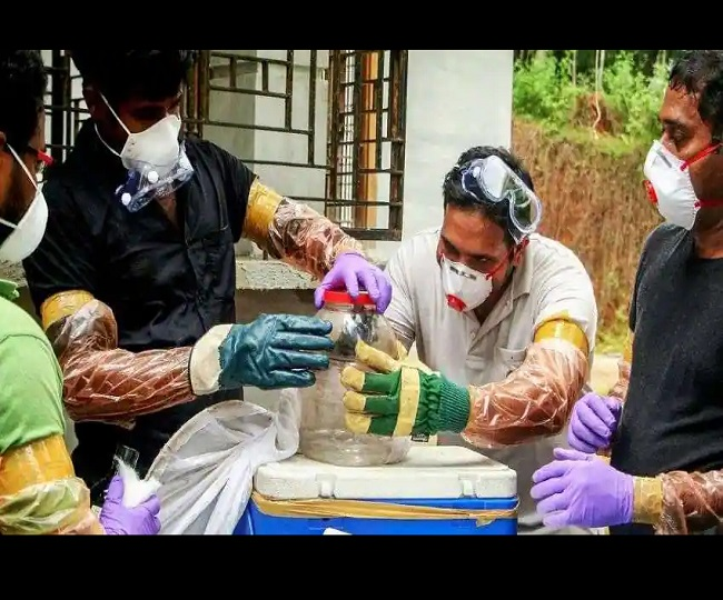 Jagran Explainer: Nipah scare in Kerala in the time of raging COVID-19 and how it poses a challenge for Indian healthcare
