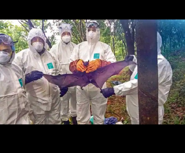 Nipah virus returns to Kerala as 12-year-old dies in Kozhikode; Centre rushes teams   Latest Updates
