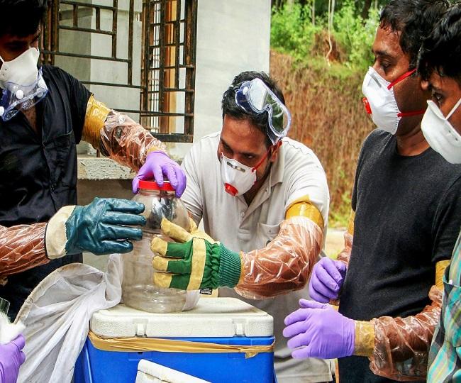 Tamil Nadu intensifies screening in 9 districts bordering Kerala after Nipah scare