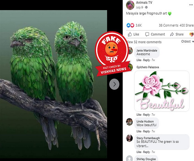 Fact Check Story: This is a digital artwork, not real birds